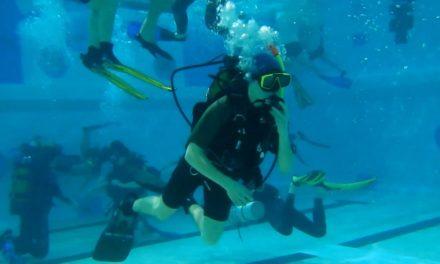 Podwodny świat Krzyśka