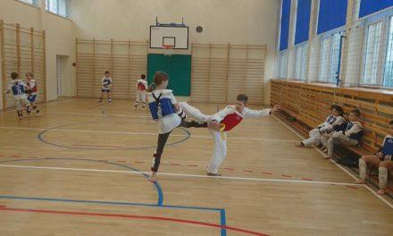 Taekwondo Dawida